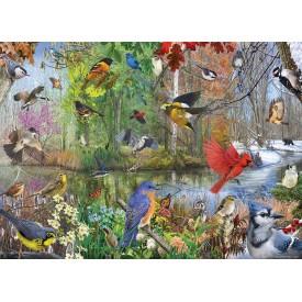 Puzzel 1000 stukjes Birds of the Season Cobble Hill