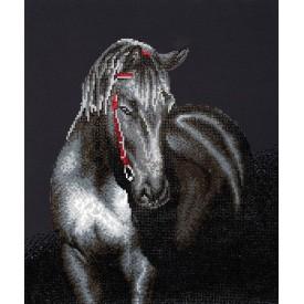 Diamond Painting 53x42 Midnight Stallion Diamond Dotz