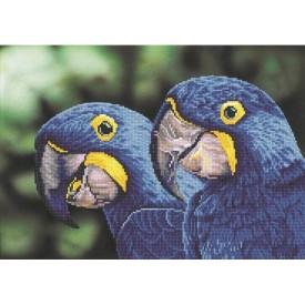 Diamond Painting 52x37 Blue Hyacinth Macaws Dotz
