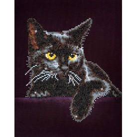 Diamond Painting 28x36 Midnight Cat with frame Diamond Dotz