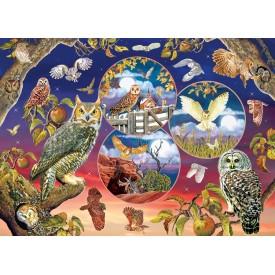 Puzzel 1000 stukjes Owl Magic Cobble Hill